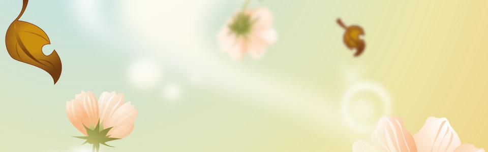 唯美朦胧落叶花朵背景banner
