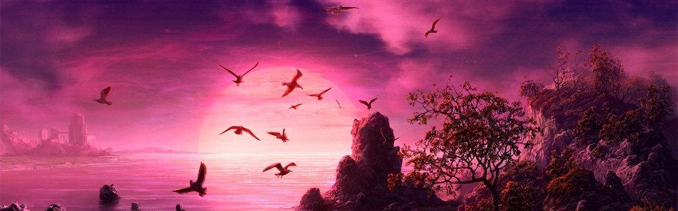 紫色唯美夕阳