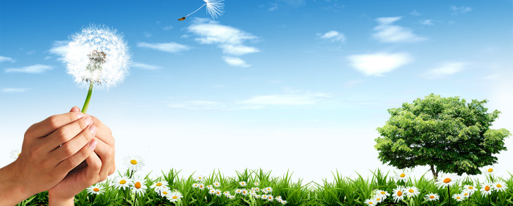 绿化环保展板banner背景高清背景图片素材下载