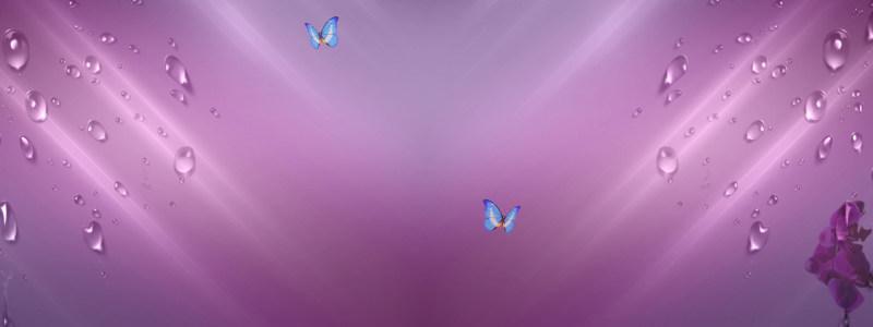 香水紫色梦幻水珠背景banner