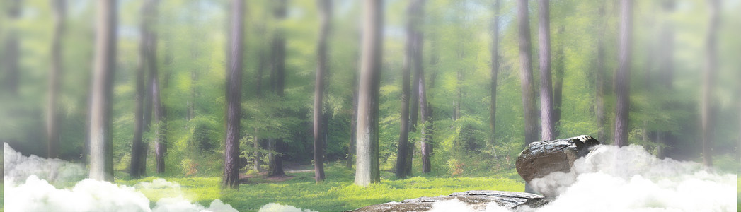 树木清新淘宝海报背景