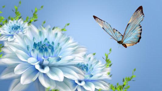 炫光蝴蝶与花高清背景