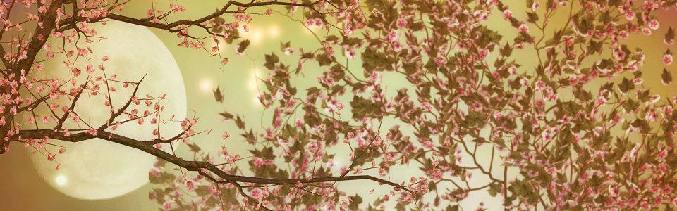 秋季夜空背景高清背景图片素材下载