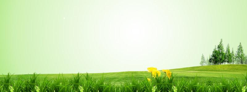 草坪背景高清背景图片素材下载
