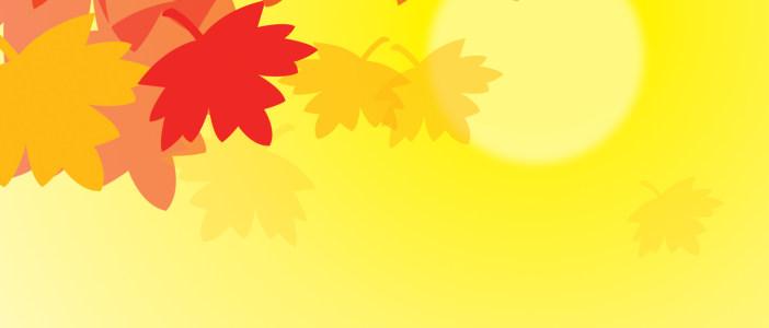 枫叶背景高清背景图片素材下载