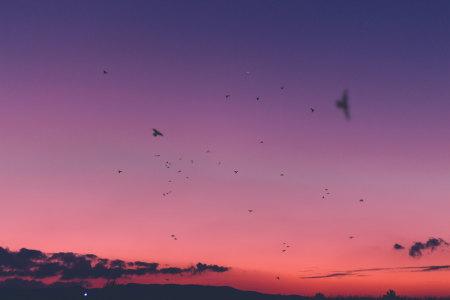 晚霞风光背景