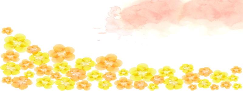 黄色小花朵背景