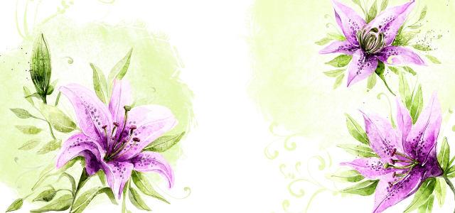 紫色盛开鲜花插画背景