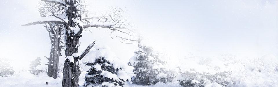 女装雪景背景高清背景图片素材下载