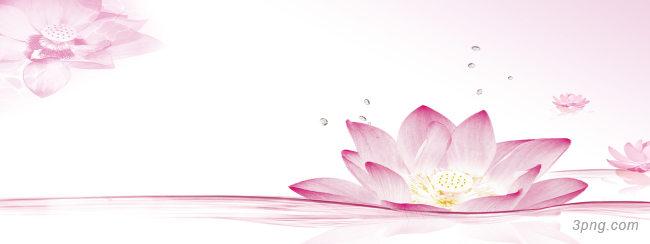 唯美花朵背景背景高清大图-唯美背景淡雅/清新/唯美