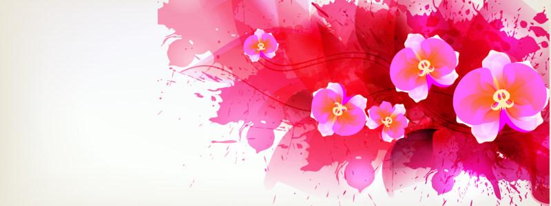 卡通手绘唯美花朵背景