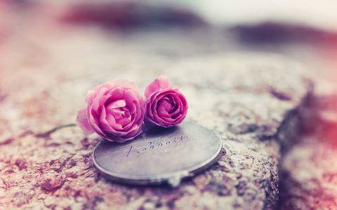 浪漫唯美背景