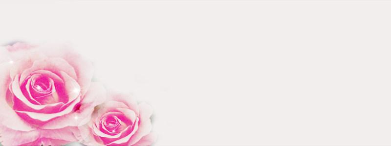 粉玫瑰温馨背景高清背景图片素材下载