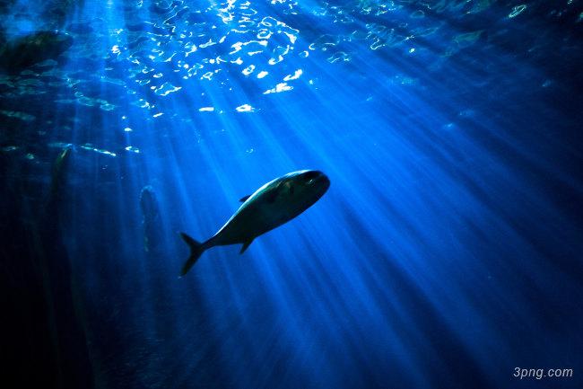 深海海底背景高清大图-深海背景底纹/肌理