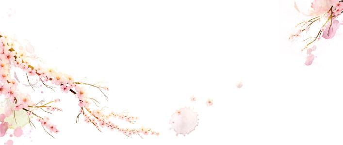 浅粉色花朵背景