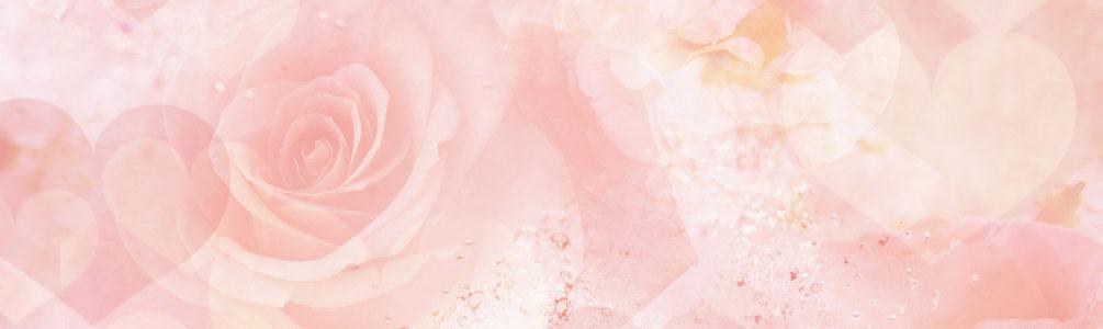 唯美玫瑰花瓣女装banner背景高清背景图片素材下载