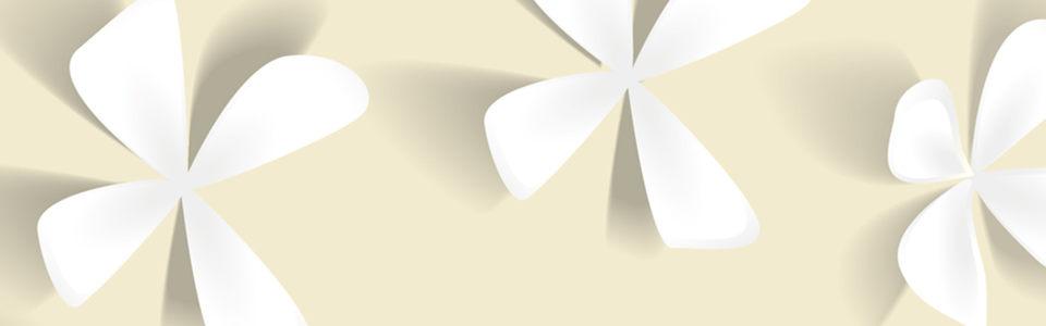 大花花朵背景图