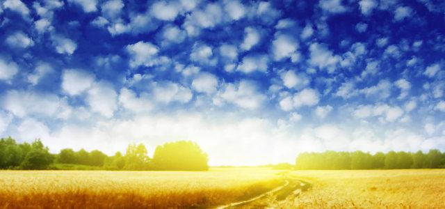 夕阳摄影背景高清背景图片素材下载