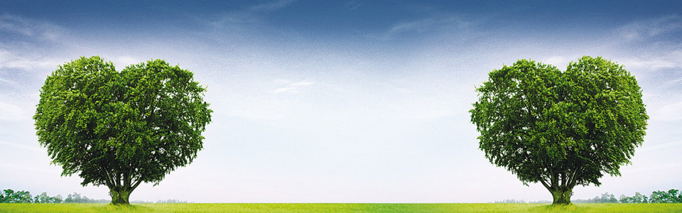 心形大树海报背景高清背景图片素材下载