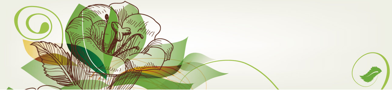涂鸦花卉背景banner