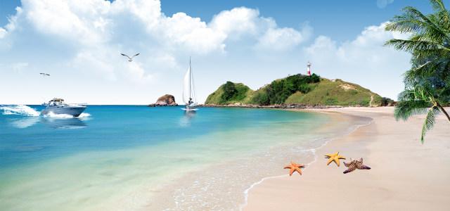 沙滩海星背景