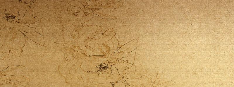 水墨 文化 屋顶 云纹 中国风 徽派 建筑 白墙黑瓦 窗格 复古 龙头 翘檐