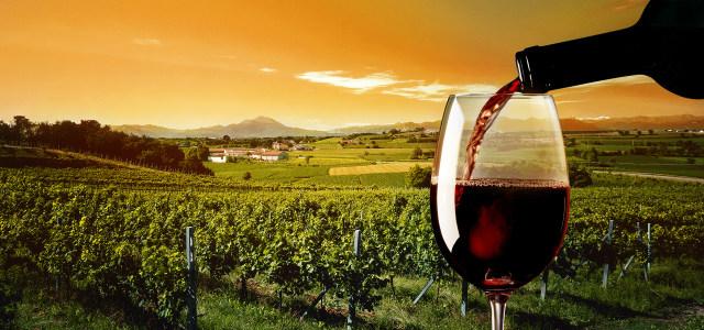大气葡萄酒庄园高清背景图片素材下载