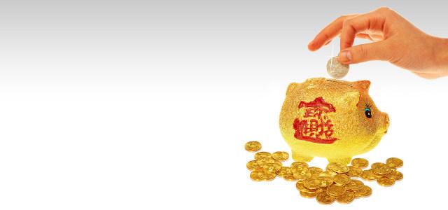 理财金币存钱小金猪