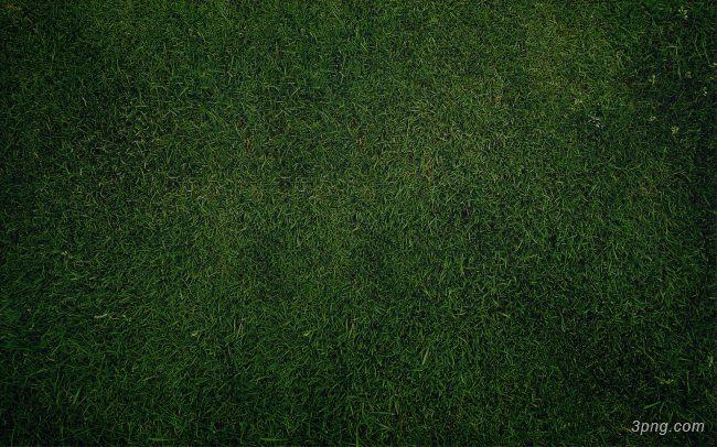 绿地草地背景背景高清大图-绿地背景底纹/肌理