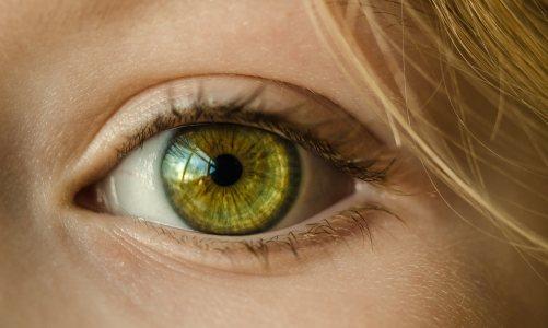 绿色的眼睛高清背景图片素材下载
