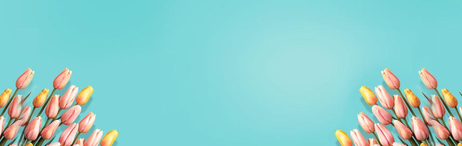女士高跟鞋蓝色唯美郁金香背景banner高清背景图片素材下载