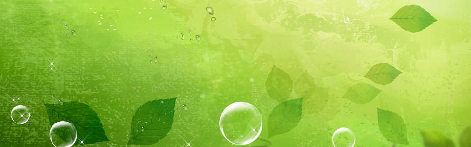 清爽手绘绿色叶子海报背景