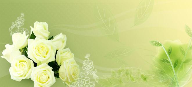 淡雅玫瑰花背景