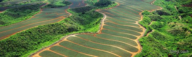 农业背景设计下载桌面壁纸背景高清大图-桌面壁纸背景其他图片