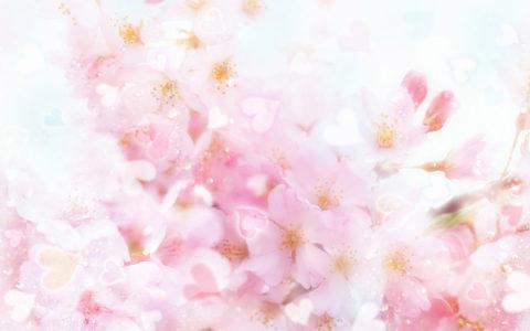桃花背景高清背景图片素材下载