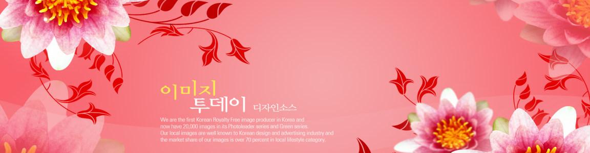 粉色 花朵 背景图