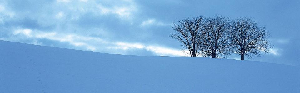 阴天雪景高清背景图片素材下载