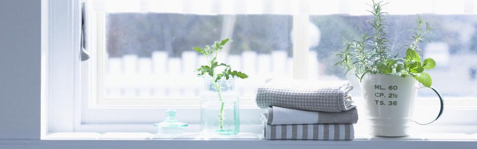 室内植物banner高清背景图片素材下载