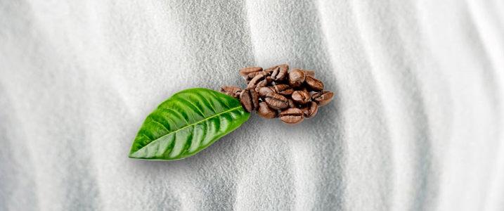 咖啡质感白色背景