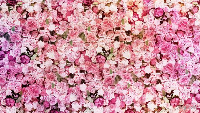 玫瑰花背景背景高清大图-玫瑰花背景淡雅/清新/唯美