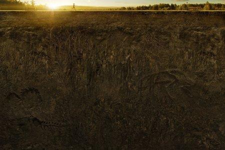 土壤表面截面剖面高清背景图片素材下载