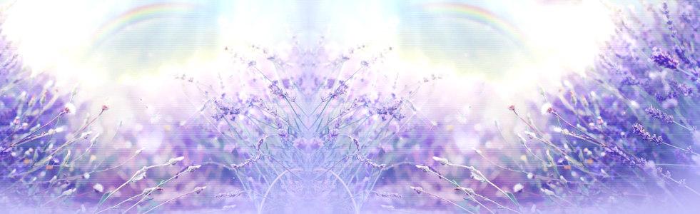 紫色毛玻璃唯美背景banner