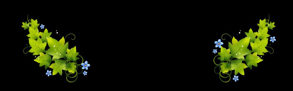 花朵绿叶banner背景