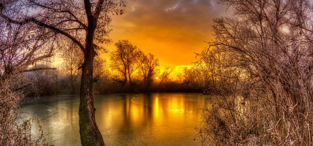 夕阳湖水树林背景