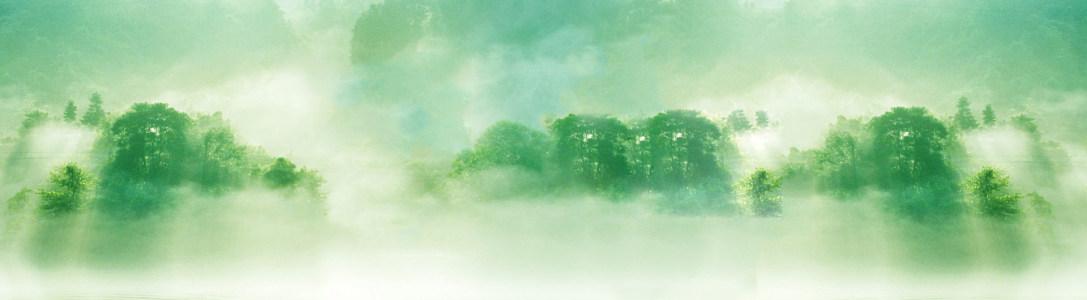 绿色景色淘宝海报背景