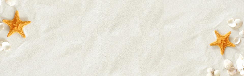 唯美海滩贝壳海报高清背景图片素材下载