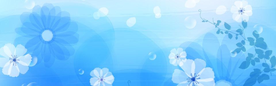 简约手绘蓝色背景白色花朵海报