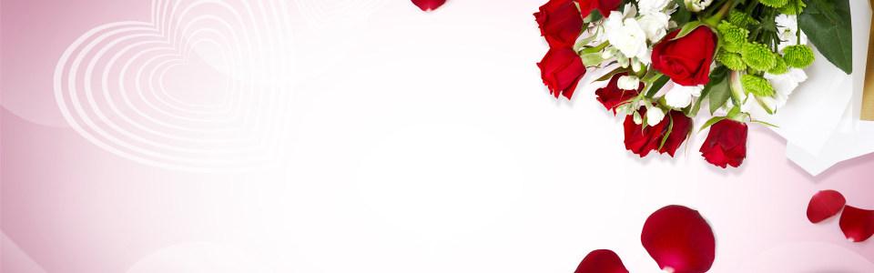 唯美玫瑰花背景
