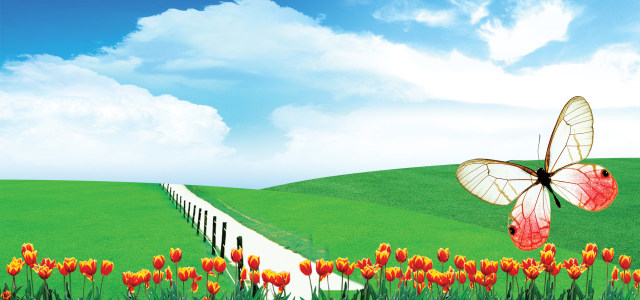 清晰绿地鲜花背景