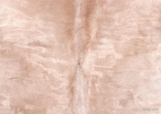 动物皮毛纹理背景高清大图-纹理背景底纹/肌理